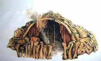 Первые достоверные следы человеческих жилищ